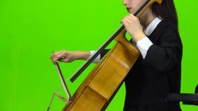 Violoncelo do jogo da mulher Tela verde Vista lateral Fim acima video estoque