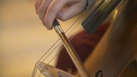 Violoncelo en orquesta Músico que toca el violoncelo almacen de video