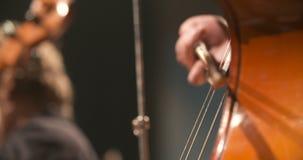 Violoncelo na orquestra Músico que joga o violoncelo video estoque