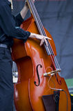 Violone Royalty Free Stock Images