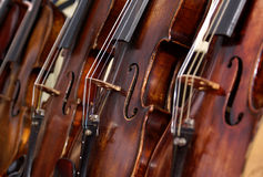 Violons Photographie stock