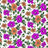 Viooltje bloemen stock illustratie