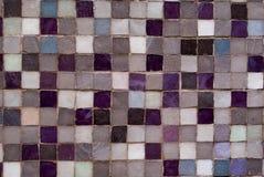 Viooltje en Grey Mosaic Stock Foto's