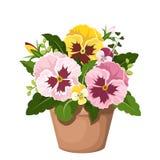 Viooltjebloemen in een pot Vector illustratie Royalty-vrije Stock Foto's