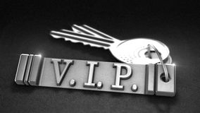 VIP Concept. VPI Concept. Keys with Keyring. 3D rendering Royalty Free Stock Photos