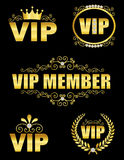 VIP decor. Collection of elegant VIP decors in gold isolated on white background Stock Image