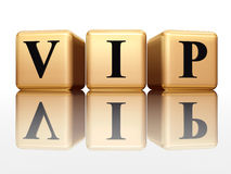 VIP with reflection Royalty Free Stock Photo