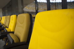 VIP stadium seat Stock Image