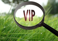 Vip very important person. Magnifying glass with the word vip very important person on grass background. Selective focus royalty free stock images