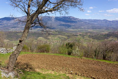Vipava Valley. Slovenia, in early spring Stock Photography