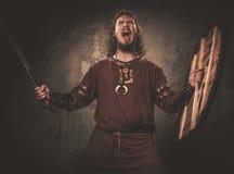 Viquingue irritado com espada em um guerreiro tradicional veste-se, levantando em um fundo escuro imagens de stock royalty free