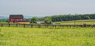 Virgínia rural cénico Imagem de Stock