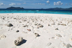 Virgen weißer Sandstrand in Mayotte-Insel lizenzfreies stockbild