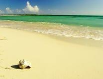virgin пляжа Стоковые Фотографии RF