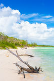Virgin beach at Coco Key (Cayo Coco) in Cuba Royalty Free Stock Photography