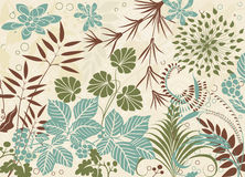 Virgin forest. Various plants in retro style as a background- vector illustration Stock Photo