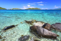 Virgin Islands Coastline Stock Photos