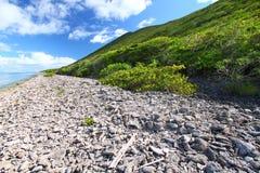Virgin Islands Coastline Stock Photo