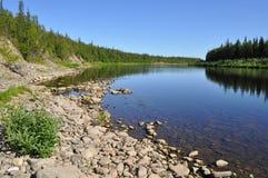 Virgin Komi forests, taiga river Paga. Stock Images