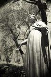 Virgin Mary fotografia stock libera da diritti