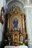 Virgin Mary Immagini Stock