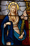 Virgin Mary church stained glass windows. Art religion Stock Image