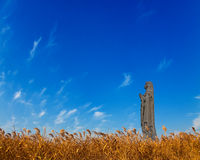 Virgin Mary statue and reed. Stock Photos