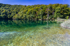 Virgin nature of Plitvice lakes national park, Croatia Stock Photography
