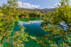 Virgin nature of Plitvice lakes national park, Croatia Stock Image