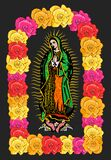 Virgin Of Guadalupe, Color Roses  Isolated Vector Illustration. Stock Images