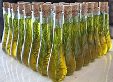 Virgin Olive Oil. With rosemary sprig royalty free stock images