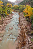 Virgin River in Fall Stock Photography