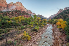 Virgin River Flowing in Zion N.P. in Fall Stock Photography