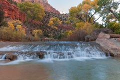 Virgin River Landscape in Fall. The scenic virgin river in zion national park utah in fall Stock Image