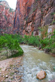 Virgin River near the Narrows, Zion National Park Royalty Free Stock Photos