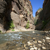 Virgin River square Royalty Free Stock Images