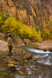 Virgin River - Utah. A young man standing in the Virgin River in Utah Royalty Free Stock Images