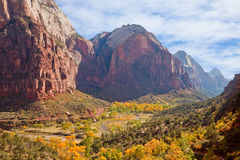 Virgin River Valley. Zion Canyon valley in full autumn glory Royalty Free Stock Photos