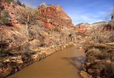 Virgin River Zion Canyon National Park Utah Royalty Free Stock Image