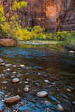 Virgin River in Zion Stock Photography