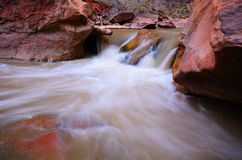 Virgin River in Zion National Park Royalty Free Stock Photo