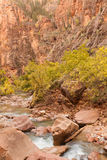Virgin River Zion National Park in Fall Stock Photo