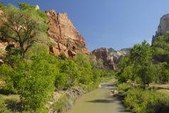 Virgin River in Zion National Park, Utah. View of the canyon of Virgin River in Zion National Park, Utah Stock Images