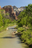 Virgin River in Zion National Park, Utah Royalty Free Stock Photos