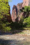 The Virgin River, Zion National Park, Utah Royalty Free Stock Photos