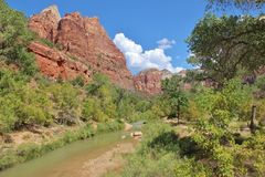 Virgin River, Zion National Park Stock Photography