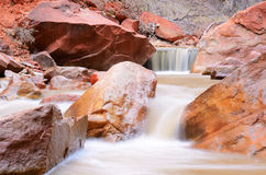 Virgin River in Zion National Park Stock Photo