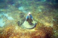 Virgin under sea Stock Image