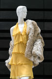 Virginal Yellow. Mannequin dressed in a tiered yellow gown of lightweight semi translucent material with a rich imitation polar bear fur coat Stock Photo
