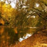 Virginia Autumn del oeste Foto de archivo